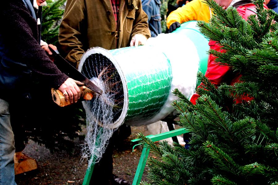 kerstbomen kopen in Londen, de mooiste en leukste kerstmarkten van Europa in 2016