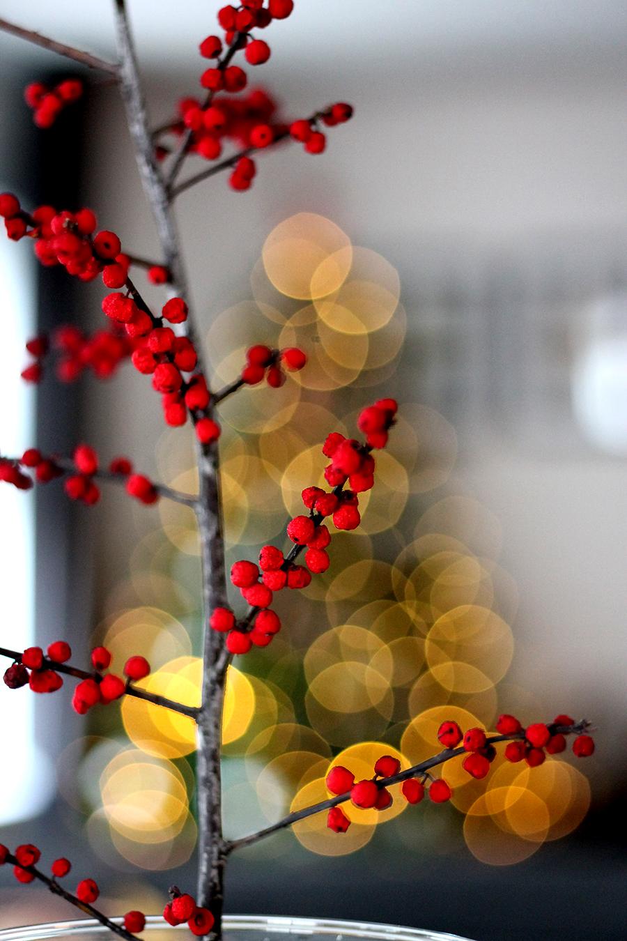 merry christmas, kerst, feestdagen, kerstmis