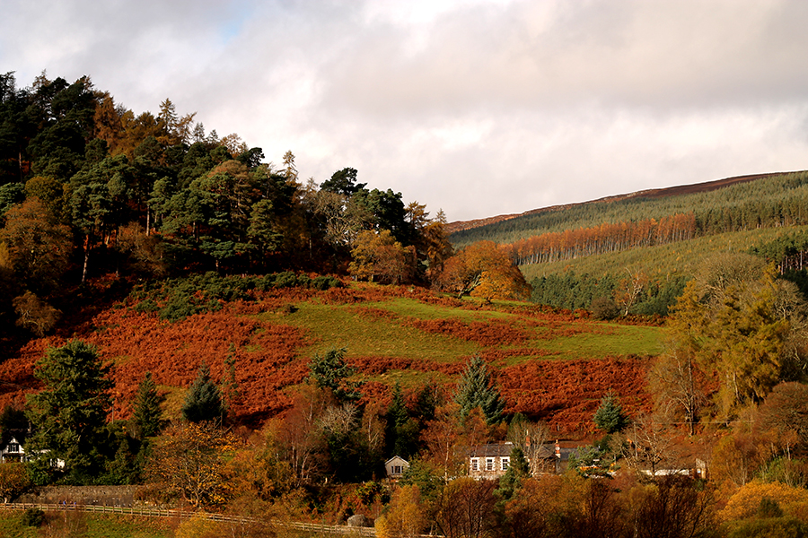 The Wicklow Mountains, Ireland, Dublin
