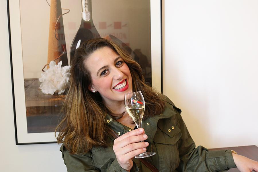 Bezoek aan de Champagnestreek, Frankrijk, Champagne