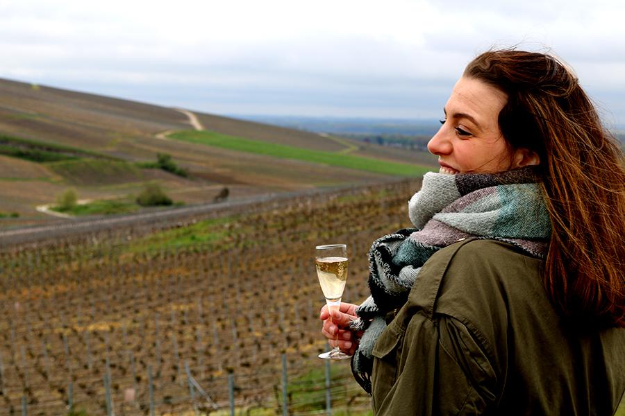 champagnestreek Frankrijk, De leukste documentaires over wijn