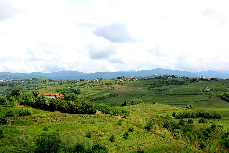Onze route door Slovenië: De Highlights
