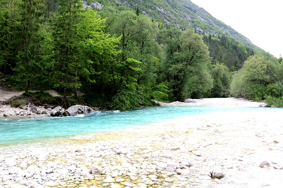 Groener dan groen Slovenië, natuur, Soca River,