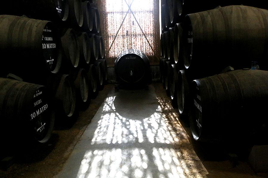 Een bezoek aan de Sherry Bodega, Jose Estevez bodega, Jose estevez vineyard, wijngaard, sherrywijn