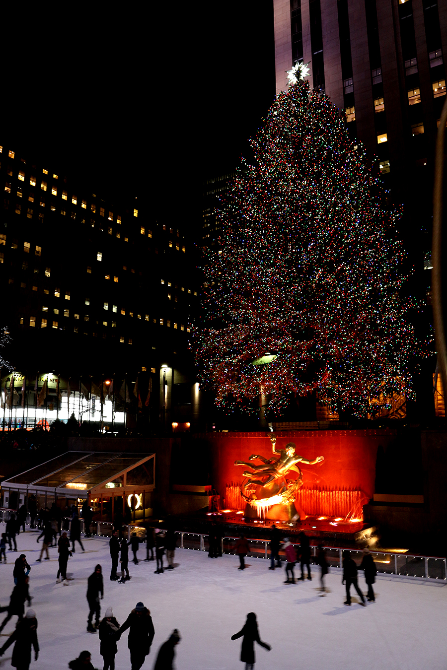 kerstbomen spotten in New York