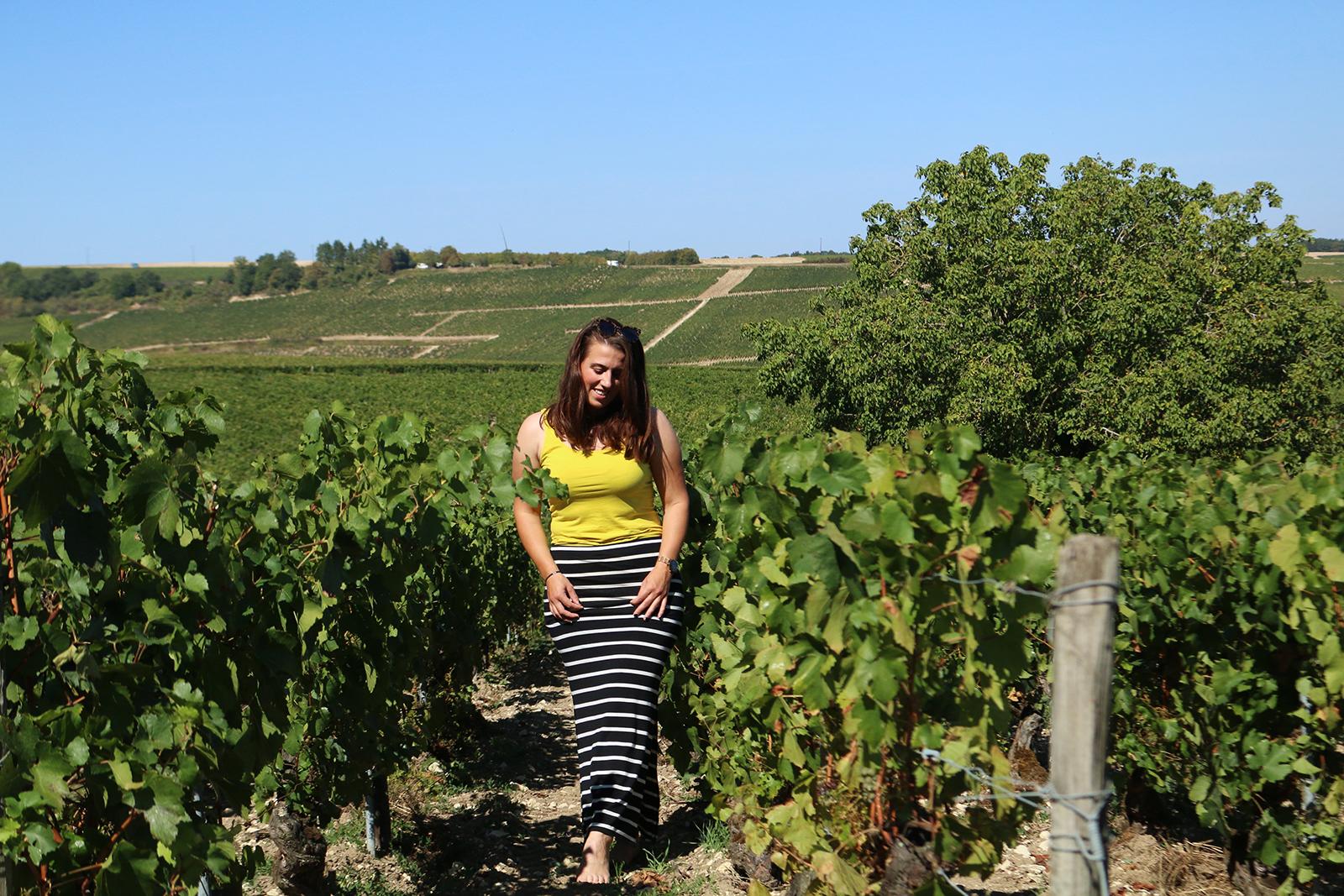 Anouk wijn Chablis