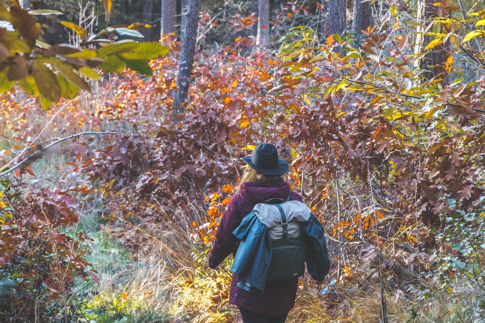 Deze jas van Fjällräven is ideaal voor elk outdoor avontuur!