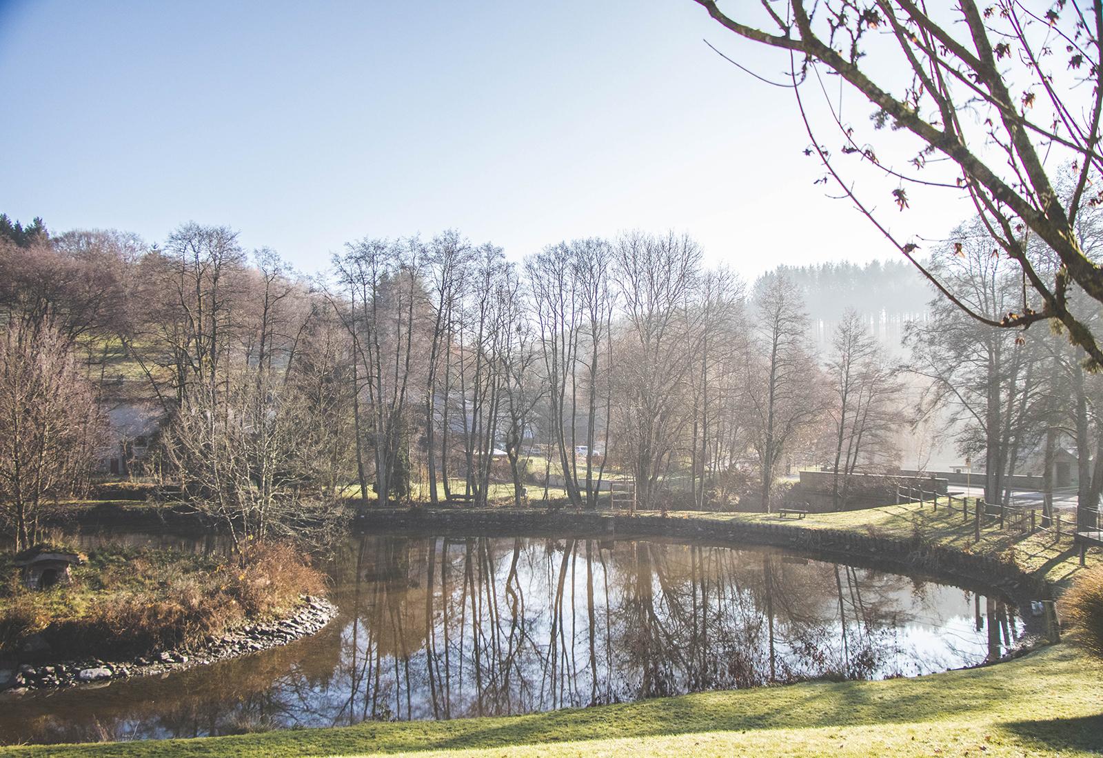 Belgische Ardennen natuur