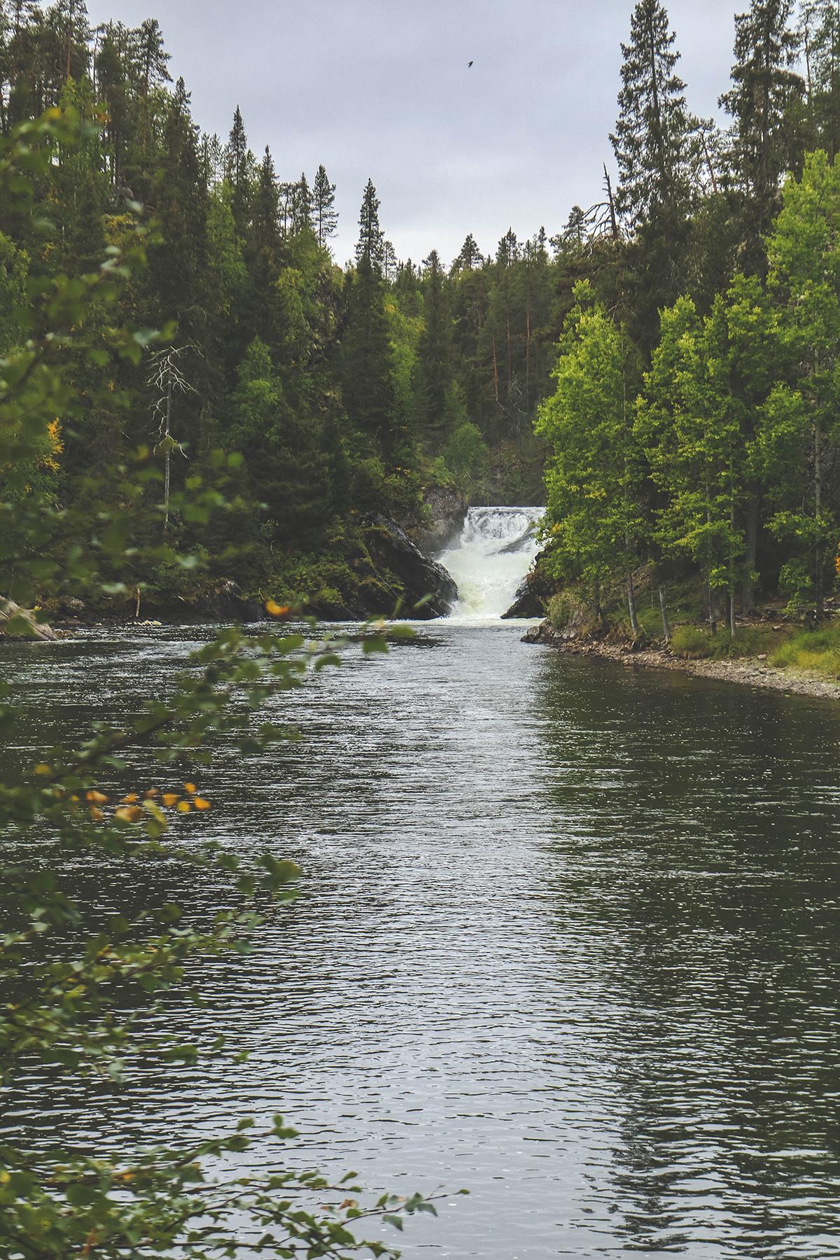 Op vakantie naar Finland - Hiken Oulanka National Park