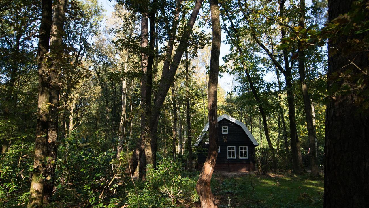 Boshuis het Krekeltje - Overnachten in het bos