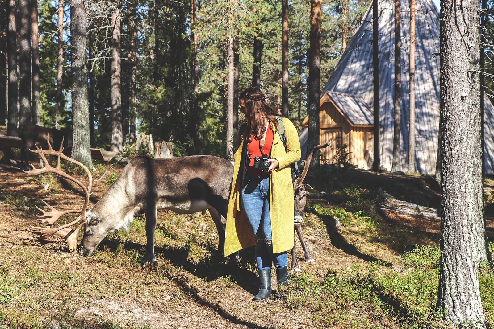 Fins Lapland in de herfst: breng een bezoek aan het mooie Salla