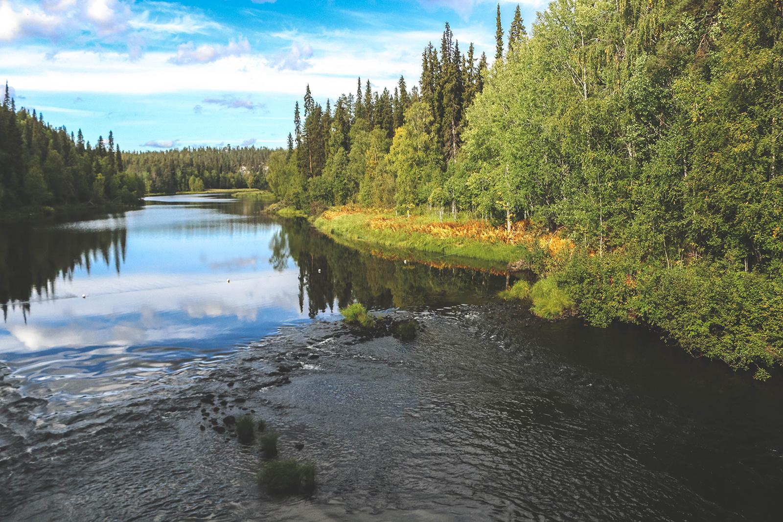 Fins Lapland in de nazomer: breng een bezoek aan het mooie Salla