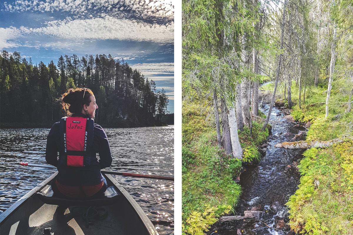 Lapland in de zomer