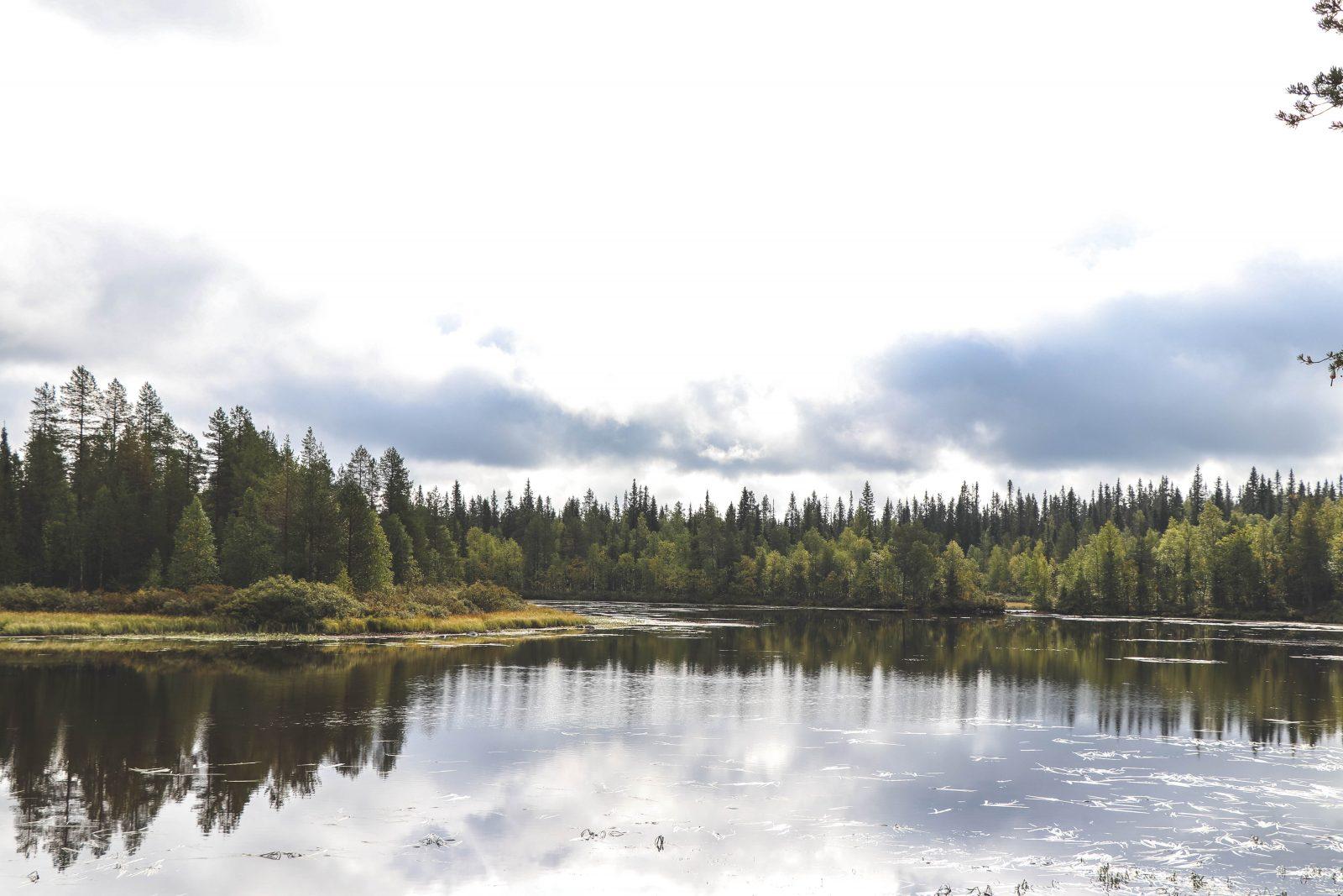 Natuur Finland