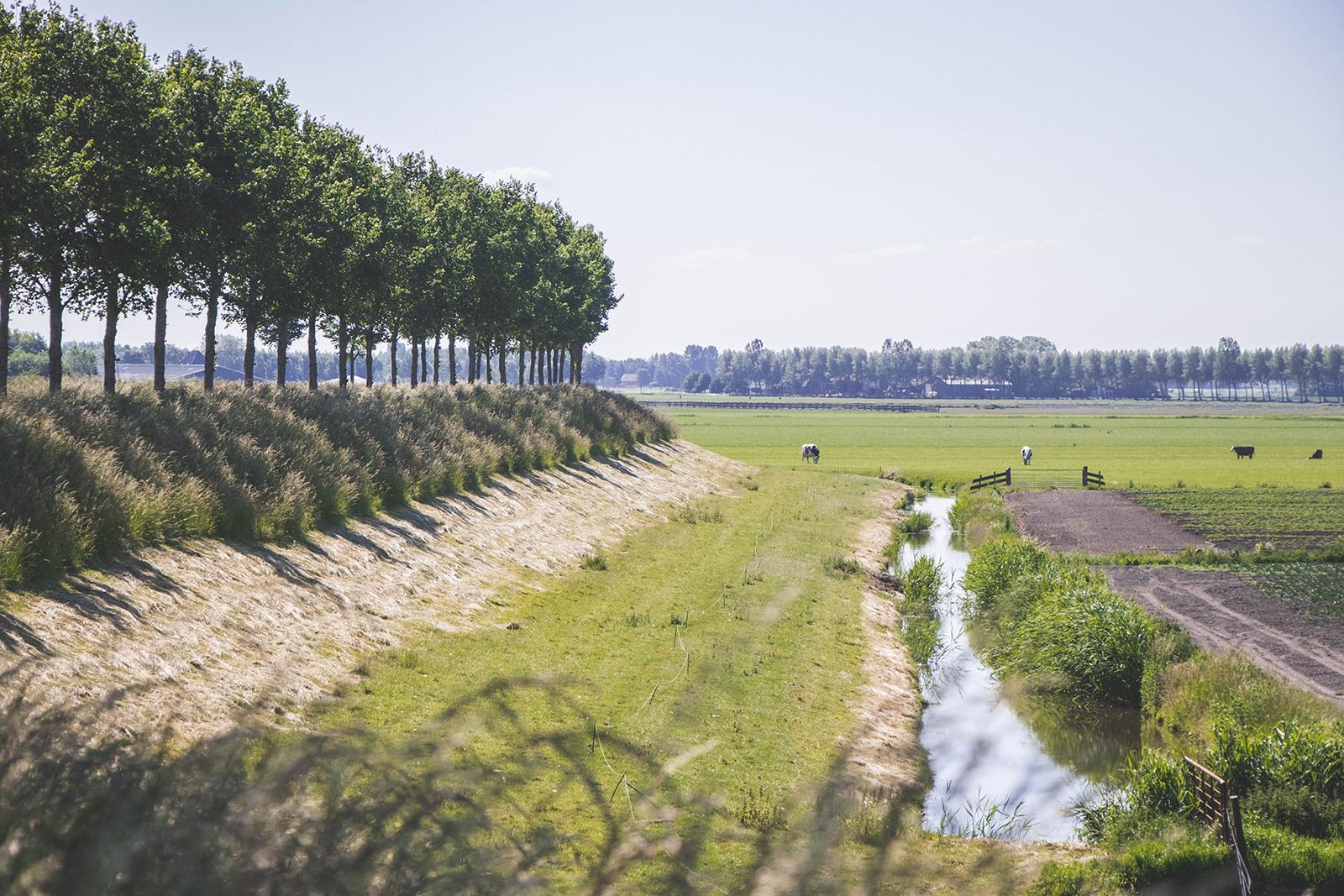 Omgeving camping boerderij avenhorn