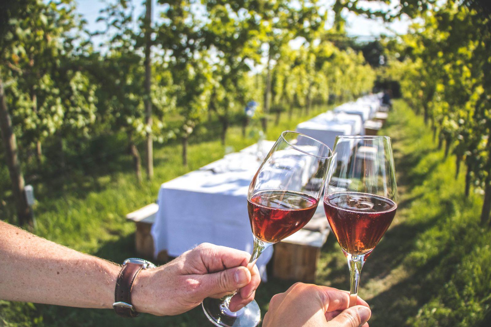 Nederlandse wijngaarden, Colonjes Groesbeek