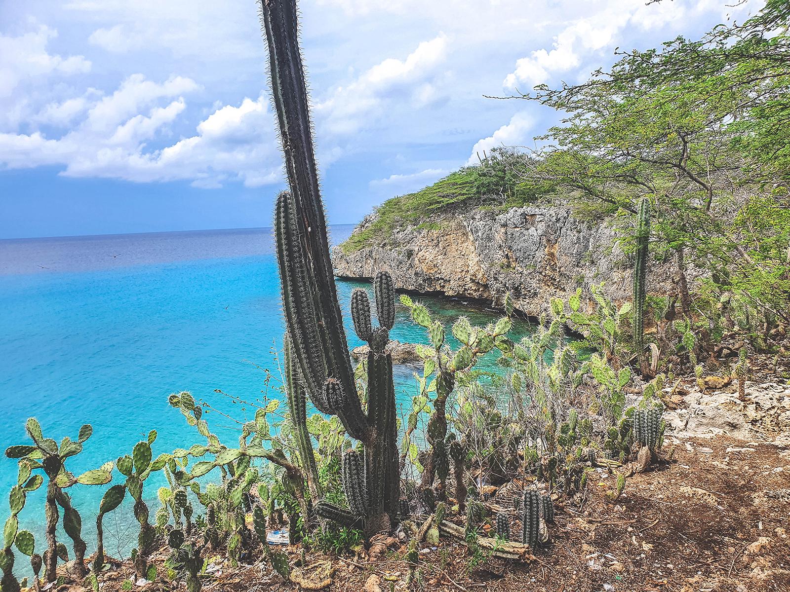 Playa-Jeremi