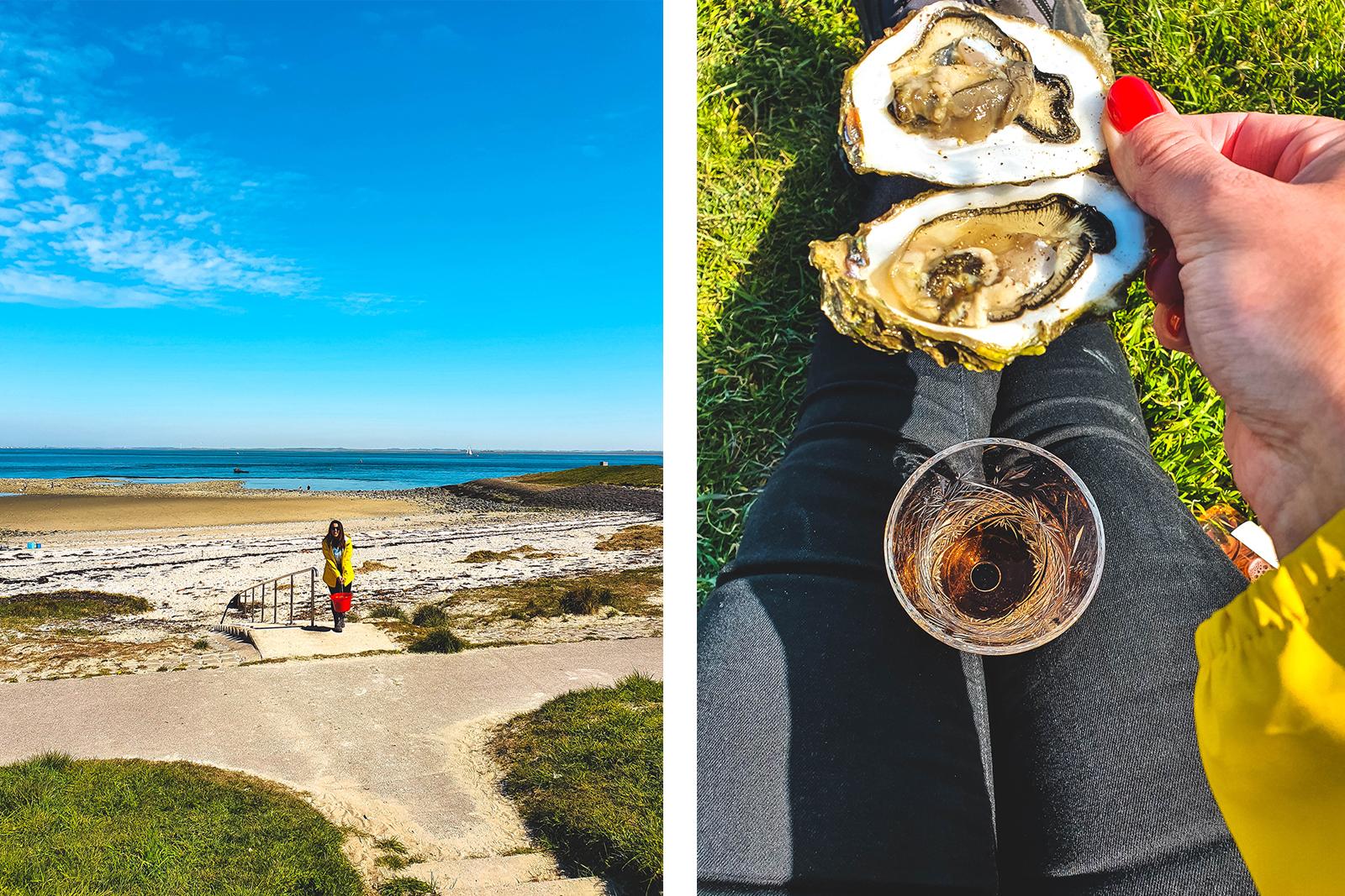oesters rapen in zeeland